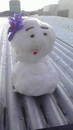雪がふりました